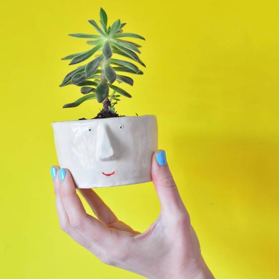 Pompilo Plants, macetas con personalidad y nombre propio
