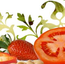 Summac Foods. Un proyecto de Diseño y Desarrollo de software de Javier Fernández Montes - 21.10.2009