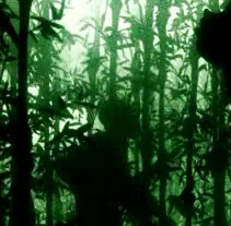 Eina • L'art de la guerra. Un proyecto de Motion Graphics de Cocobongo - Martes, 25 de mayo de 2010 13:51:28 +0200