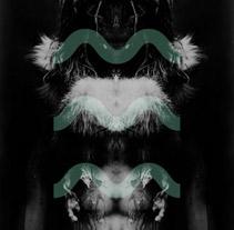 Hermitage Typefont. Un proyecto de Diseño de Luishøck  - Jueves, 03 de febrero de 2011 15:27:33 +0100