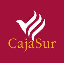 CajaSur - Campañas. Un proyecto de Diseño y Publicidad de Pablo Caravaca - 09-02-2011