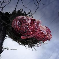 Werewolf. A Design, Illustration, and UI / UX project by Juan Ramón Fernández Oliver         - 16.03.2012