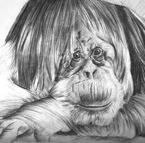 Orangután  . Un proyecto de Diseño e Ilustración de Jean Merlano         - 22.03.2012