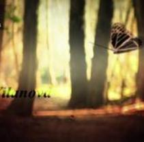 Ribadumia. A Motion Graphics, Film, Video, TV, Music, Audio, and Advertising project by Leonard Zuklev - Jul 31 2012 02:24 PM