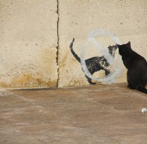 Funny animals. Um projeto de  de Merce Bergada         - 12.12.2012