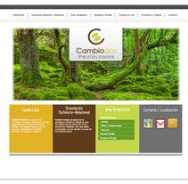 Cambio 2 website. Un proyecto de Diseño e Informática de Chema Castaño - 08-03-2013