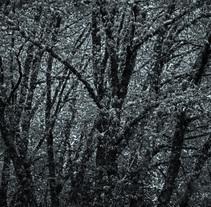 neve na fraga. A Photograph project by Alberte Sánchez Regueiro         - 17.12.2013