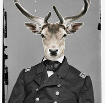 Commanders Animals. A Design, and Photograph project by Lenadro Lerroux         - 21.12.2013