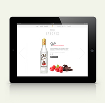 Stoli web. A Web Design project by allende lopez - 09-11-2014