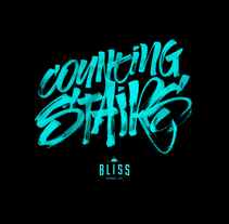 Bliss Wheel Co - Apparel. A Calligraph, Graphic Design, T, and pograph project by Baimu Studio - 04.01.2015