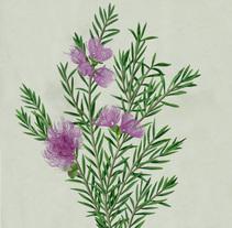 Botanical. Um projeto de Ilustração de marta zafra         - 20.09.2014