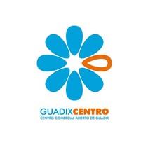 Guadix Centro. Un proyecto de Br, ing e Identidad y Diseño gráfico de Javier Leal - 31-12-2015