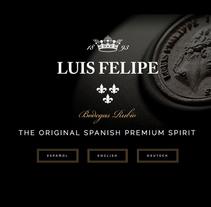 Brandy Luis Felipe. Diseño de Página Web. A Web Design, and Web Development project by JohnAppleman® Agencia de Diseño Madrid         - 30.04.2016