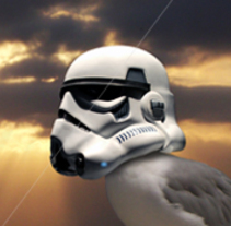 Star Wars Seagull. A Creative Consulting, and Graphic Design project by Angel Asperilla         - 12.06.2016