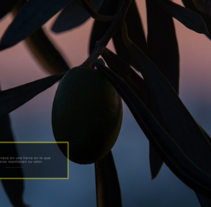 Oleoestepa Interactive. Um projeto de Publicidade, Consultoria criativa e Web design de Lorenzo Bennassar         - 30.10.2014
